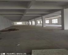 (出租)前洲洛洲路二楼1800平厂房出租
