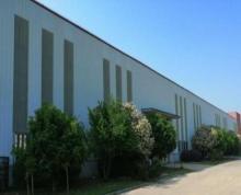 (出租) 江宁滨江开发区独栋单一层9000方厂房出租