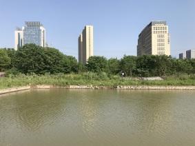 建邺区河西中部26号地块