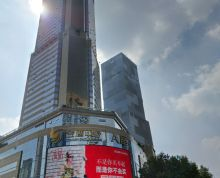 《南京国际金融中心》招商部 现有100-2000平好房招租 中介勿扰