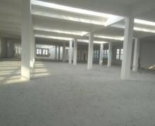 (出售) 港城大厂房2万平方成熟地段