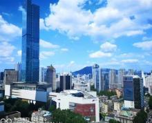 (出租)南京CBD新街口240平至2000平可分割 落地窗 全明