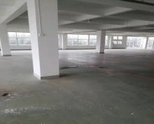 (出租)二层混凝土标准厂房库存出租