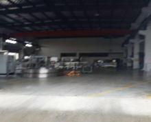 (出租) 秣陵工园独门独院2700平高9米厂房交通方便急租