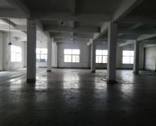 (出租)新湖厂房出租,800平,价格21元,二证齐全,近昆山