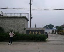 (出售)滨海新区2500平厂房出售可用于店面