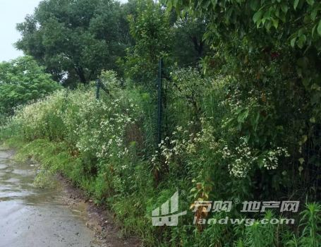 南京高淳慢城区域农地转让