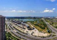 雨花台区板桥新城商业储备地块2018G31初判报告