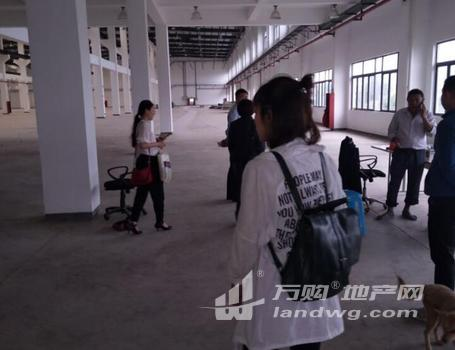 [A_10530]【第一次拍卖】(破)南京市高淳区经济开发区古檀大道69号4号厂房及2号厂房地基