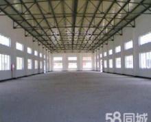 (出租)凌桥乡工业园 标准厂房出租出售