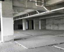 (出租) 科学园 河定桥 纯写字楼 6000平米