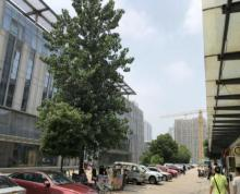 小龙湾地铁站物业招商 面积可分割 行业不限品牌优先