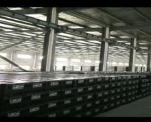 (出租) 江浦 滁州乌衣工业园厂房离浦口很近 厂房 10000平米