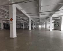 (出租)九龙湖 300至4000平 大型展厅类带办公 可分割 车位