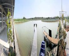 (出租)现有20亩鱼塘对外出租 设施齐全 可垂钓