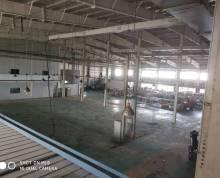 出租栖霞新港开发区一楼单层厂房2800平米檐口下9米可架10T桁车