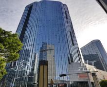 (出租)凤凰国际大厦 197平精装修 带家具 园区自贸区 地铁口