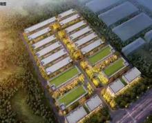 (出租)新港开发区,标准花园式厂房对外出租,价格便宜,对外出租出售