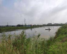 (转让)转让或出租150亩鱼虾蟹类养殖场(大闸蟹,龙虾))