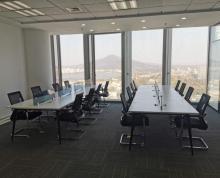 (出租)紫峰大厦 全新装修带家具 正对玄武湖 电梯口 商业齐全