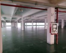 (出租)秣陵四楼仓库4000平可分租一半 大货梯 交通方便