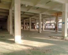 (出租)殷巷一楼厂房 地段优越适合仓储配送