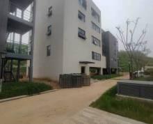 紫东仙林核心区得房率最高的好房