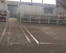 (出租)江宁湖熟16000平单一层仓库出租,可分租,带雨棚带平台