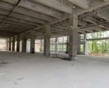 (出租)桃花工业区2楼4000方标准框架厂房出租可分租