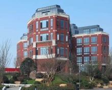江宁大学城生命科技小镇1300平独栋办公楼送600平花园