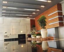 玄武区 德基大厦 新出稀有户型 60天免租采光通透