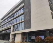 紫东核心龙头仙林绝佳独栋好房适合有实力品牌企业入住