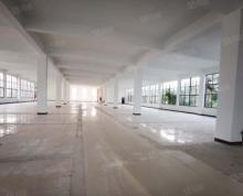 (出租)九龙湖诚信大道大面积厂房 可整租可分租 500一1600平方