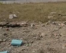 (转让)出租 吴江工业用地 可以做水利地皮 适合 木托堆放