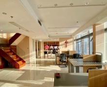 (出租)苏宁慧谷 豪华装360平全套家具 正南朝向 电梯口 河西万达
