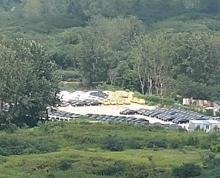 (出租)高淳区 高淳50亩地办公400平方 土地 33300平米