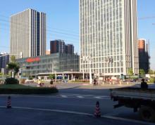 河西建邺地铁口《凤凰文化广场》精装带家具 仅一套