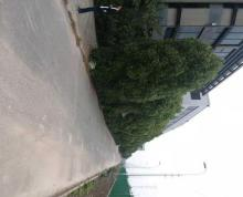 (出租) 扬子江南路九龙湾附近7千带16丅行车标准钢结构可年租做仓库