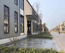 (出售)开发商直售,亚威东侧50年产权标准工业厂房
