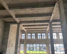 (出售)金枫南路一楼厂房招好企,大开发商政府房源,可按揭,预售中