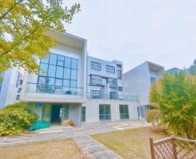 滨湖江大南门商务园独栋办公楼得房百分之两百带超大前后花园