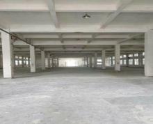 (出租) 东亭一楼标准厂房1140高7米,另有办公楼