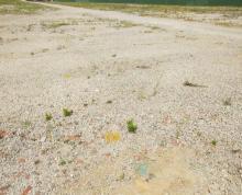 (转让)雨花区铁心桥,大周路,出租国有工业用滴。土地80亩。