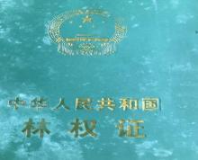 (出租) 安徽省绩溪 土地 9000平米