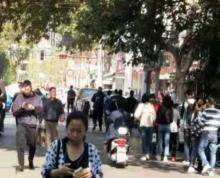 大行宫文昌巷旺铺招租市口好行业无限制双证齐全