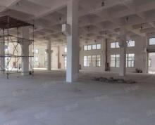 (出租)渭塘单层厂房1700平,配带消防喷淋,带牛腿。无污染行业即可