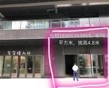 (出租) 南京南站喜马拉雅临街旺铺出租