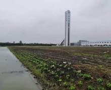 出售紧邻苏州园区 昆山以及上海嘉定 50年产权?