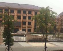 (出售) 雅居乐 滨江国际 南京一中对面 临街可重餐饮商现铺