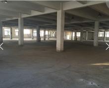 出租江宁汤山工业园厂房1000平米办公楼250平米独门独院年租金12万